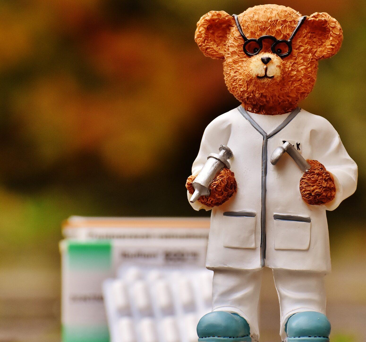 白衣を着た熊